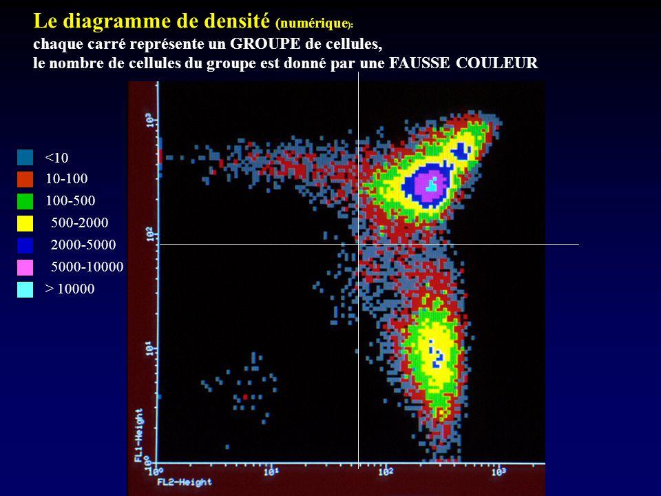 Le diagramme de densité (numérique ): chaque carré représente un GROUPE de cellules, le nombre de cellules du groupe est donné par une FAUSSE COULEUR