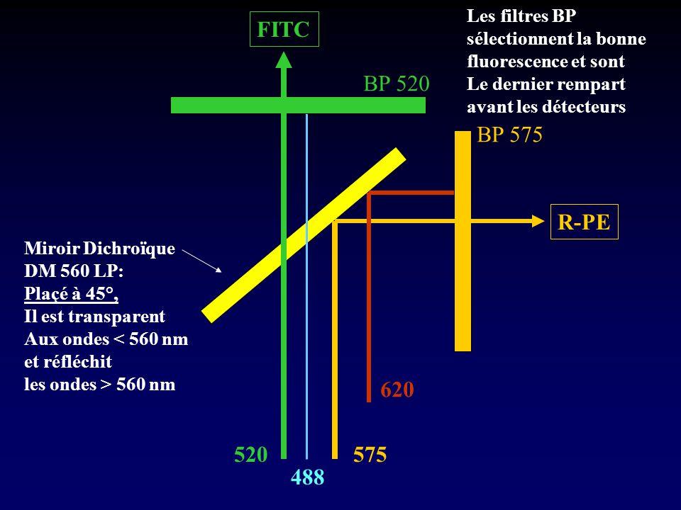 520 488 575 Miroir Dichroïque DM 560 LP: Plaçé à 45°, Il est transparent Aux ondes < 560 nm et réfléchit les ondes > 560 nm BP 520 BP 575 620 Les filt