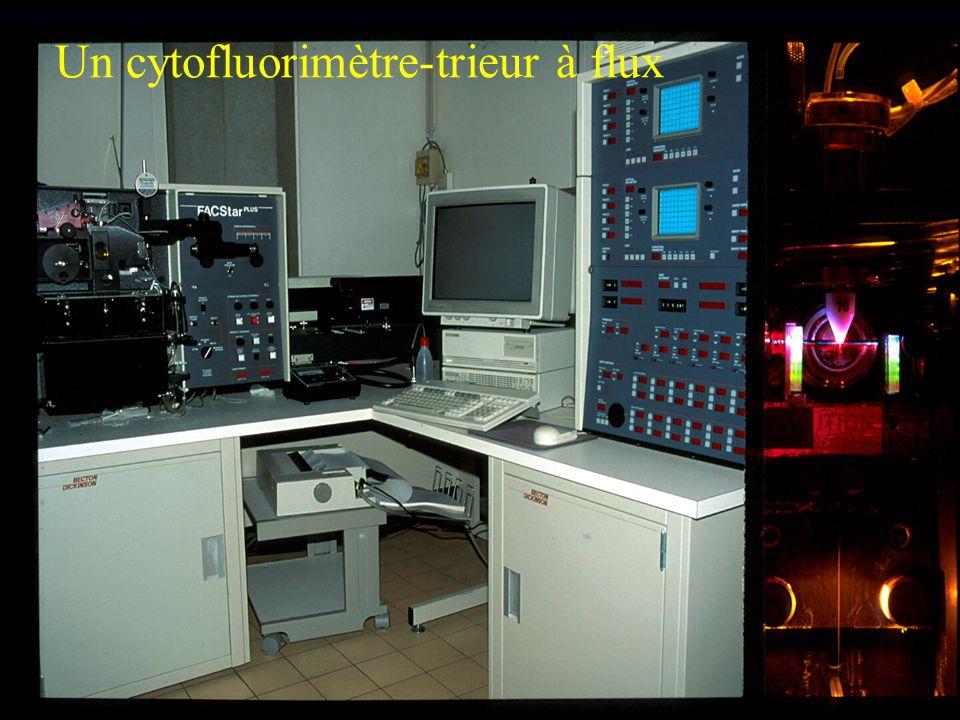 Un cytofluorimètre-trieur à flux