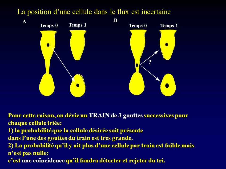 La position d'une cellule dans le flux est incertaine Pour cette raison, on dévie un TRAIN de 3 gouttes successives pour chaque cellule triée: 1) la p