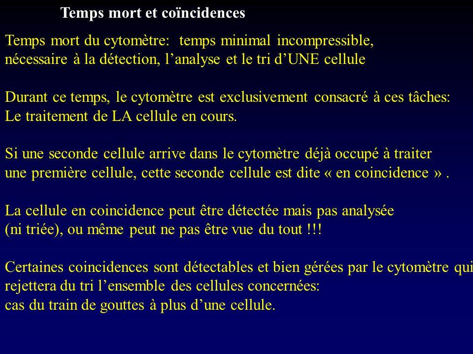 Temps mort et coïncidences Temps mort du cytomètre: temps minimal incompressible, nécessaire à la détection, l'analyse et le tri d'UNE cellule Durant