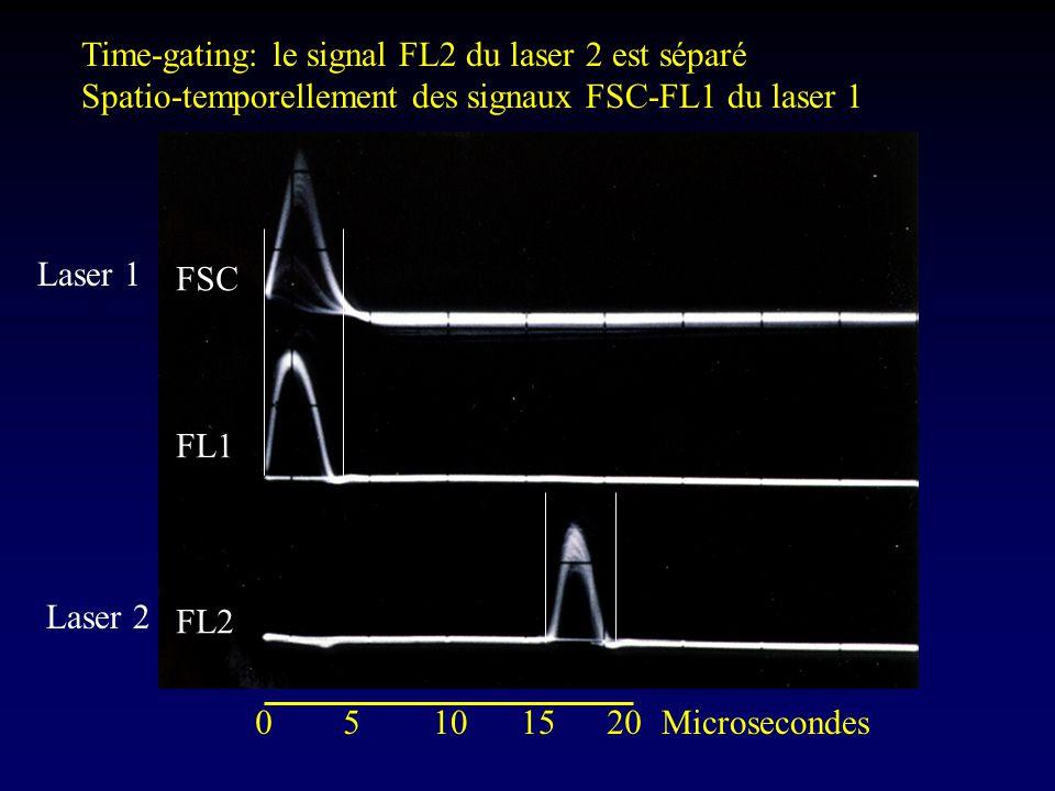Laser 1 Laser 2 05101520Microsecondes FSC FL1 FL2 Time-gating: le signal FL2 du laser 2 est séparé Spatio-temporellement des signaux FSC-FL1 du laser