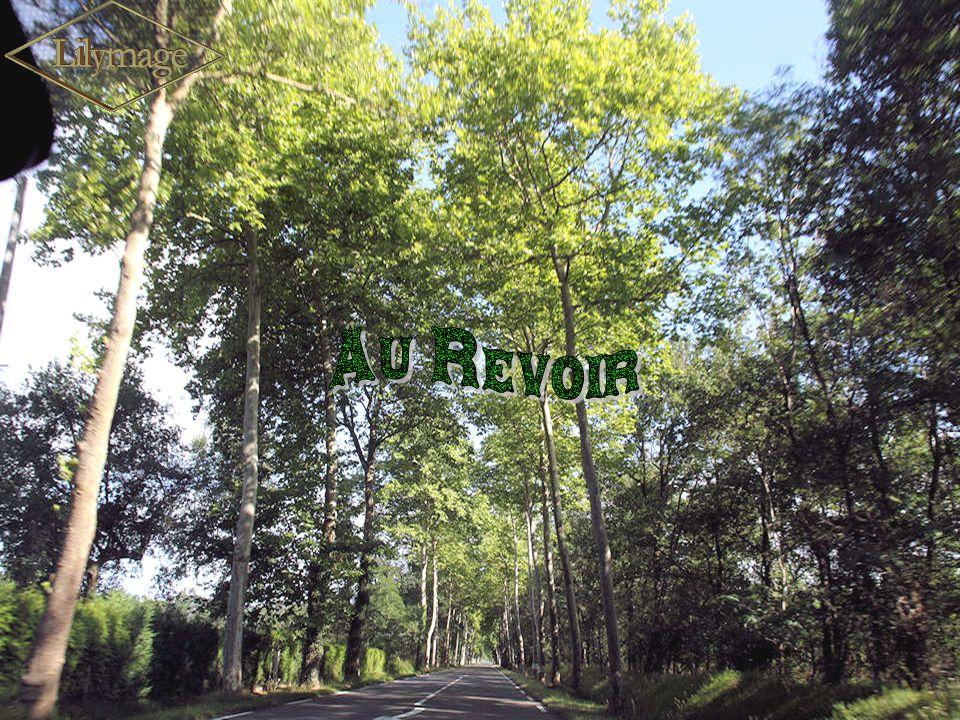 Informations prises sur place et dans différents guides. Conception, réalisation, photos : L. Cavallari. Musique folklorique basque interprétée par le