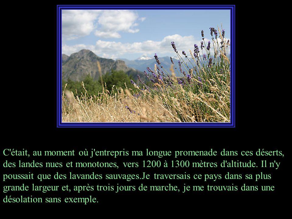 Cette région est délimitée au sud-est et au sud par le cours moyen de la Durance, entre Sisteron et Mirabeau; au nord par le cours supérieur de la Drôme, depuis sa source jusqu à Die; à l ouest par les plaines du Comtat Venaissin et les contreforts du Mont-Ventoux.