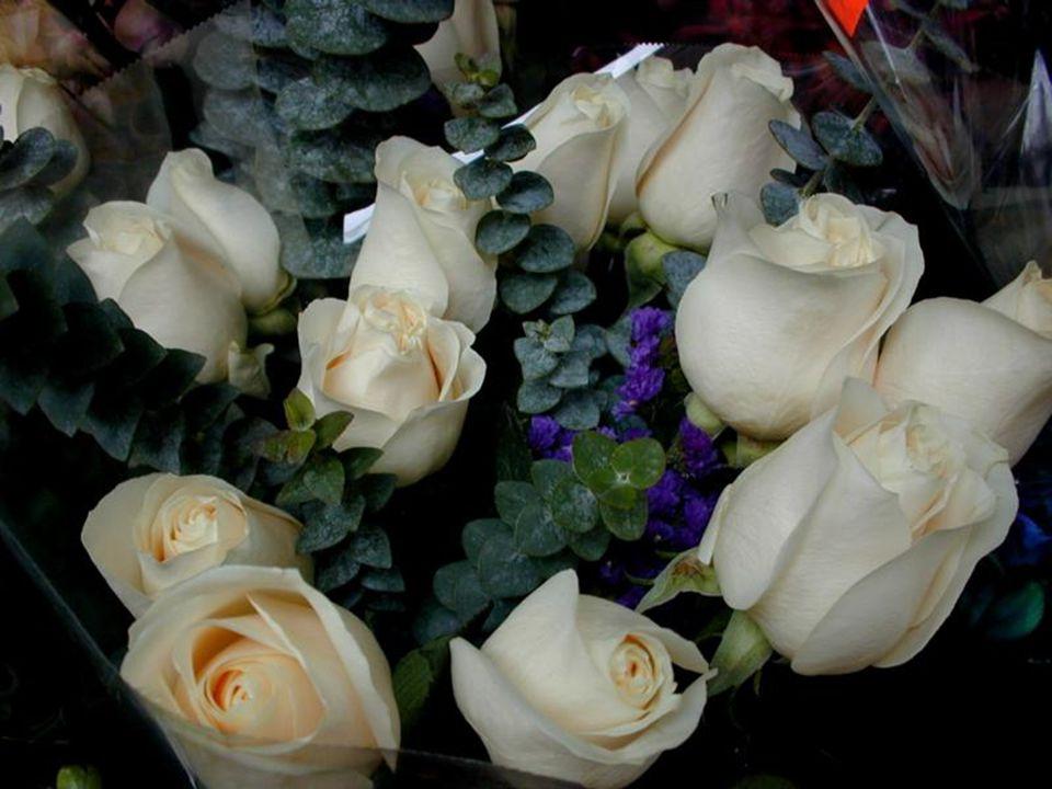 J ai reçu des fleurs aujourd hui.Ce n était pas mon anniversaire ni un autre jour spécial.