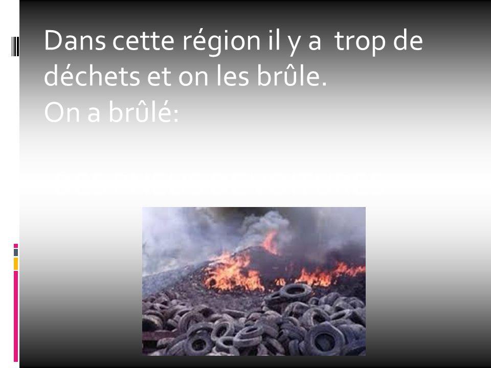 Dans cette région il y a trop de déchets et on les brûle. On a brûlé: -DES PNEUS DE VOITURES