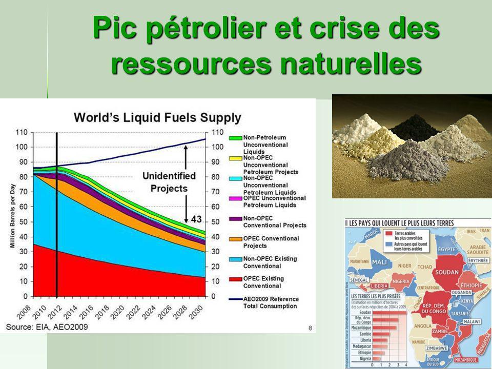 Pic pétrolier et crise des ressources naturelles