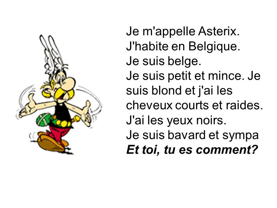 Je m'appelle Asterix. J'habite en Belgique. Je suis belge. Je suis petit et mince. Je suis blond et j'ai les cheveux courts et raides. J'ai les yeux n