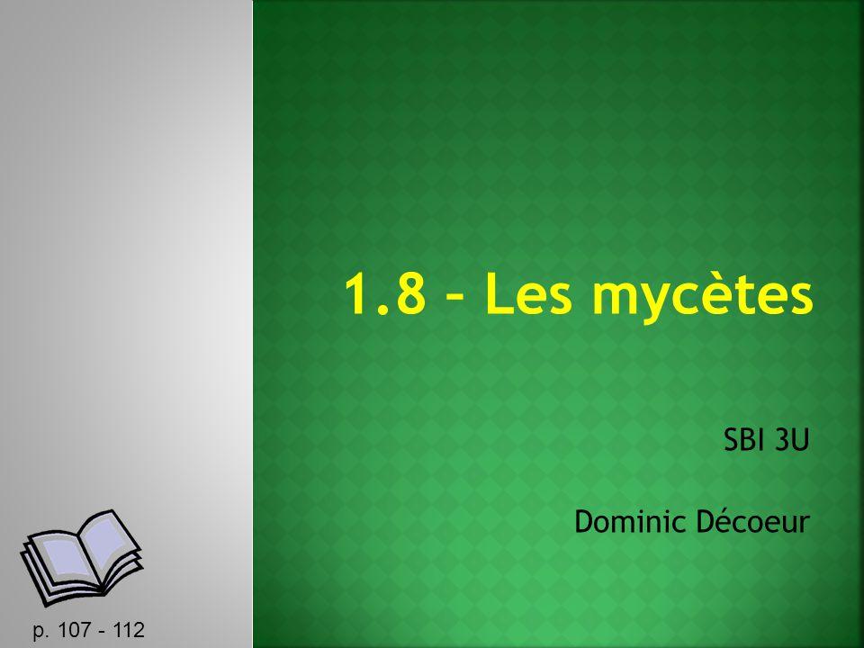 SBI 3U Dominic Décoeur p. 107 - 112