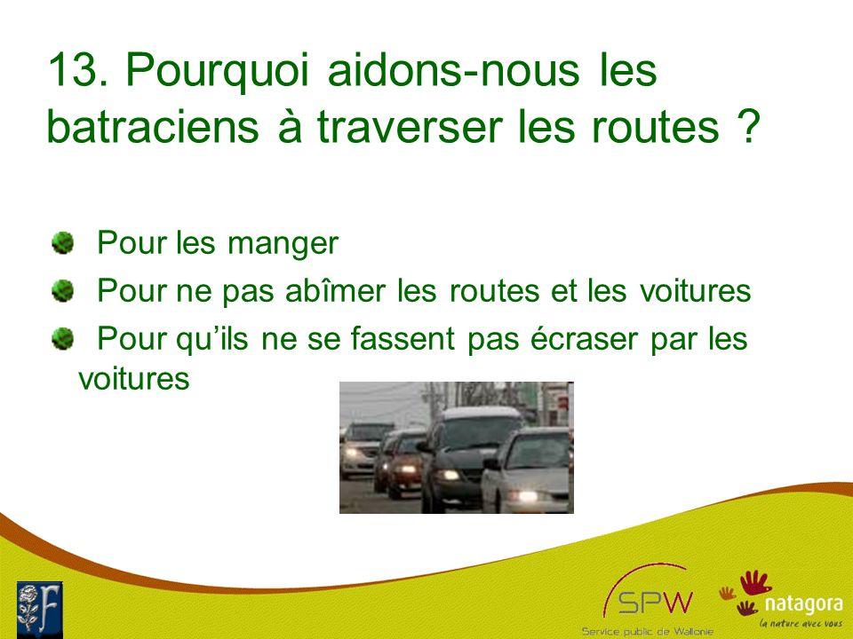 13. Pourquoi aidons-nous les batraciens à traverser les routes .
