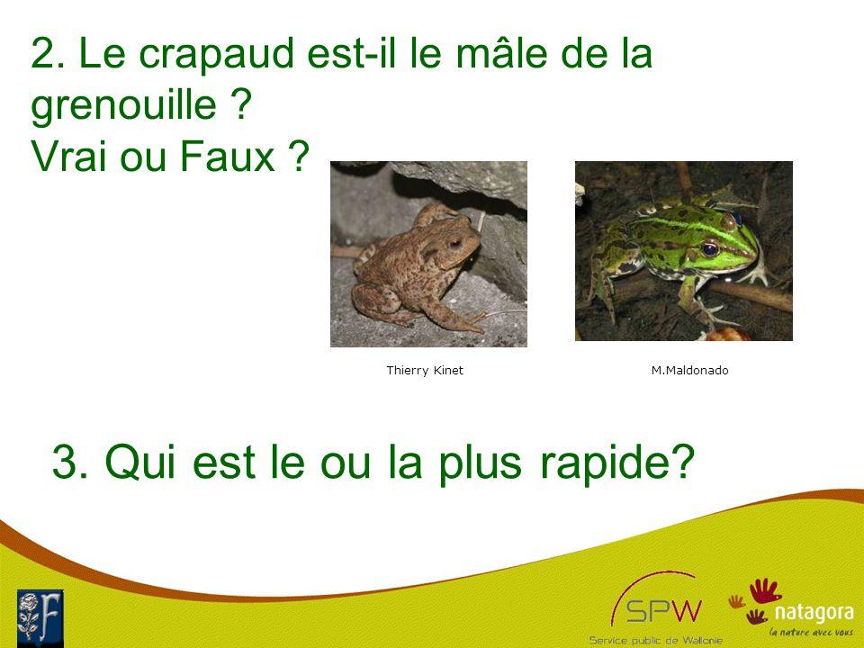 2. Le crapaud est-il le mâle de la grenouille . Vrai ou Faux .
