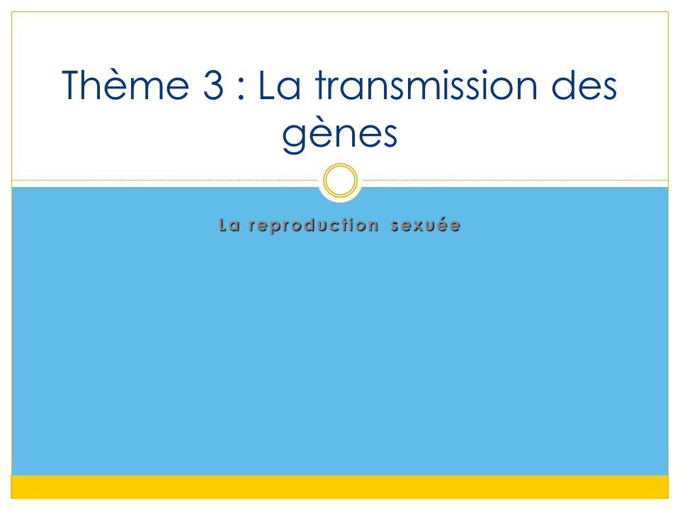 La reproduction sexuée Thème 3 : La transmission des gènes