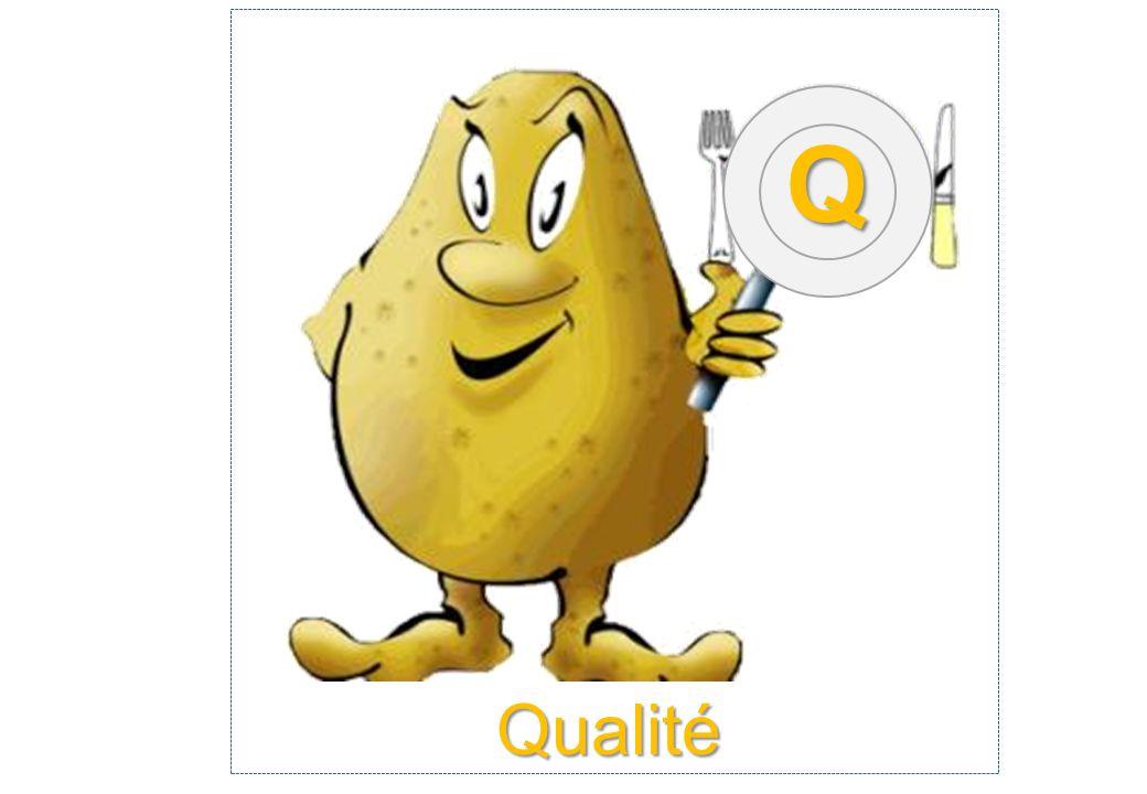 Qualité Q