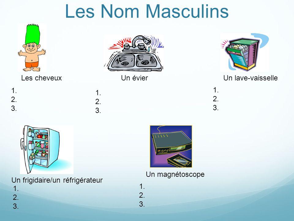 Les Nom Masculins Les cheveuxUn évierUn lave-vaisselle Un frigidaire/un réfrigérateur Un magnétoscope 1.