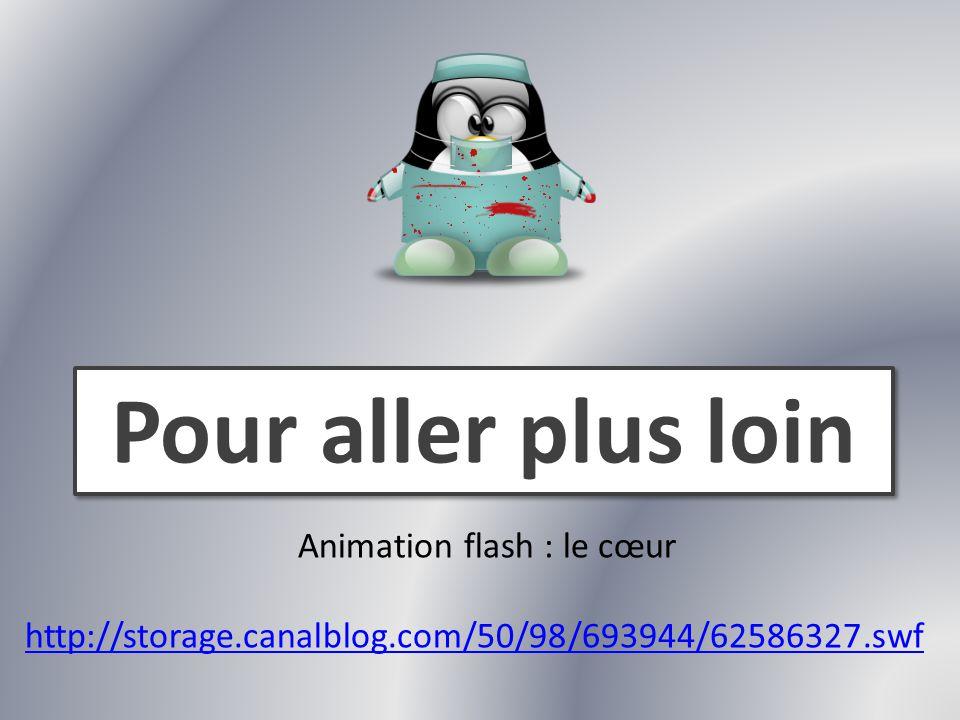 Pour aller plus loin Animation flash : le cœur http://storage.canalblog.com/50/98/693944/62586327.swf