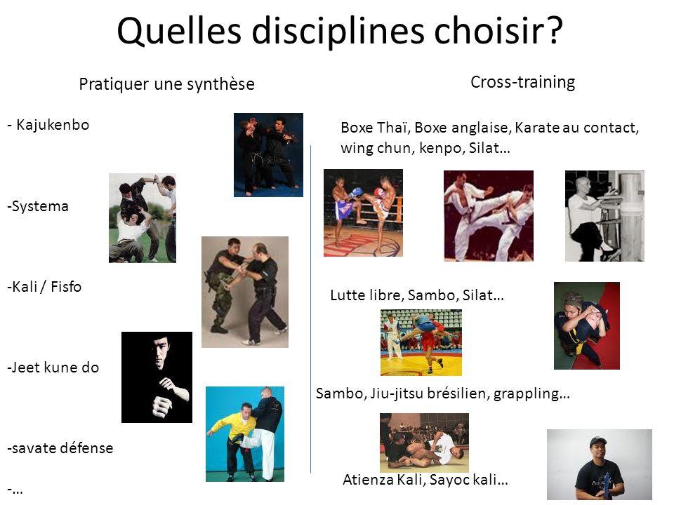 Quelles disciplines choisir? Pratiquer une synthèse Cross-training - Kajukenbo -Systema -Kali / Fisfo -Jeet kune do -savate défense -… Boxe Thaï, Boxe