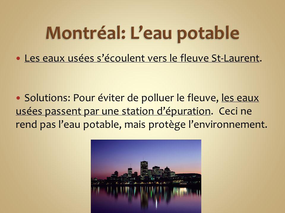 Les eaux usées s'écoulent vers le fleuve St-Laurent. Solutions: Pour éviter de polluer le fleuve, les eaux usées passent par une station d'épuration.
