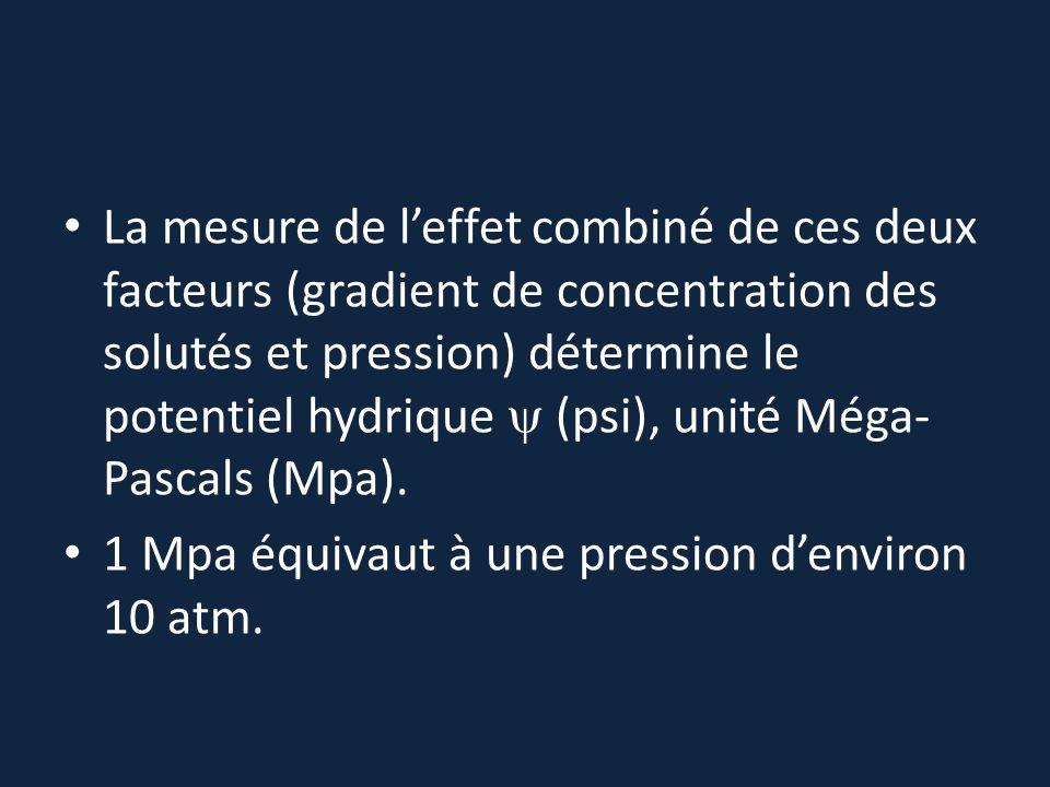 La mesure de l'effet combiné de ces deux facteurs (gradient de concentration des solutés et pression) détermine le potentiel hydrique  (psi), unité M