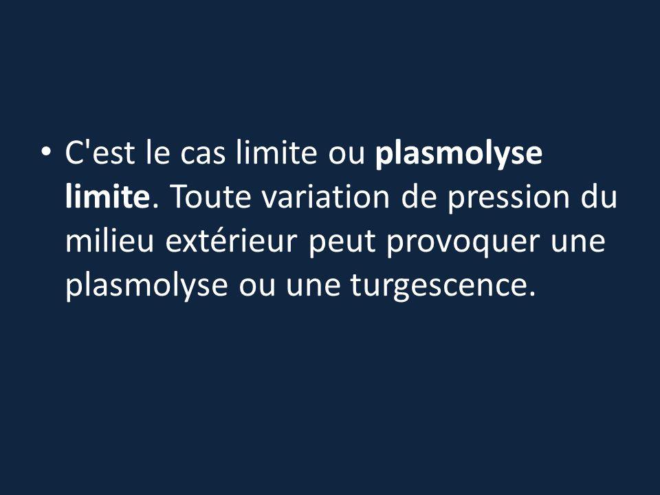 C'est le cas limite ou plasmolyse limite. Toute variation de pression du milieu extérieur peut provoquer une plasmolyse ou une turgescence.