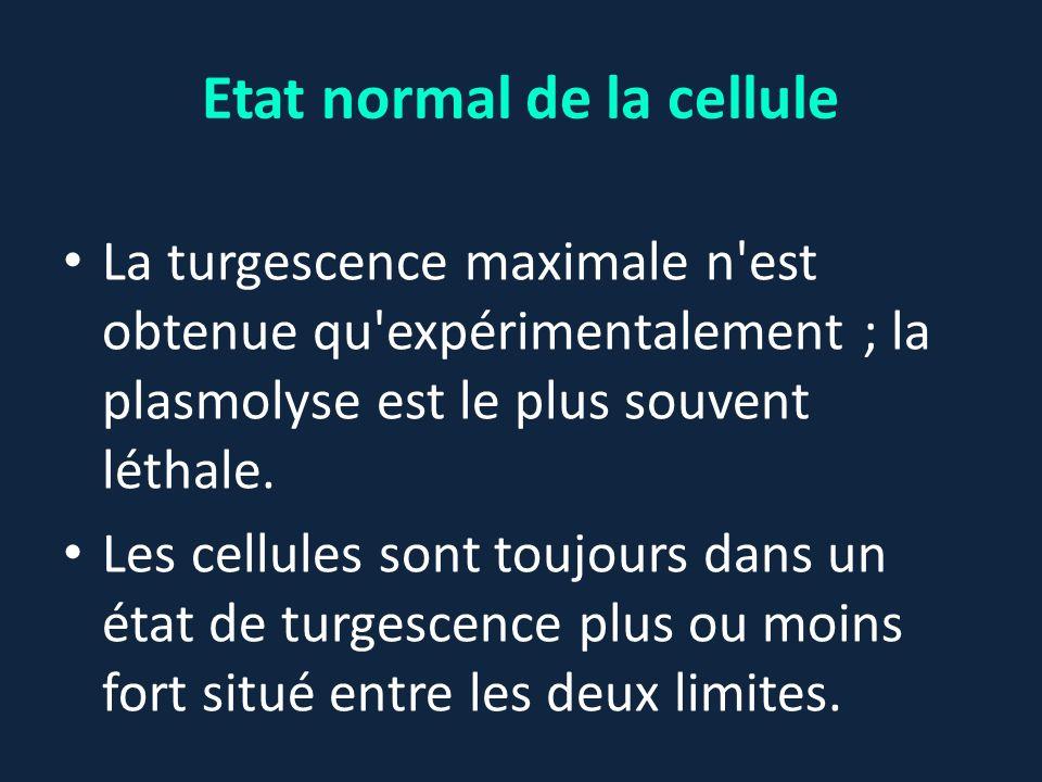 Etat normal de la cellule La turgescence maximale n'est obtenue qu'expérimentalement ; la plasmolyse est le plus souvent léthale. Les cellules sont to