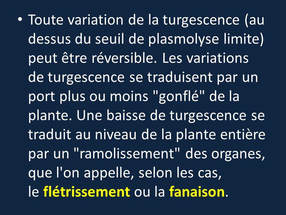 Toute variation de la turgescence (au dessus du seuil de plasmolyse limite) peut être réversible. Les variations de turgescence se traduisent par un p