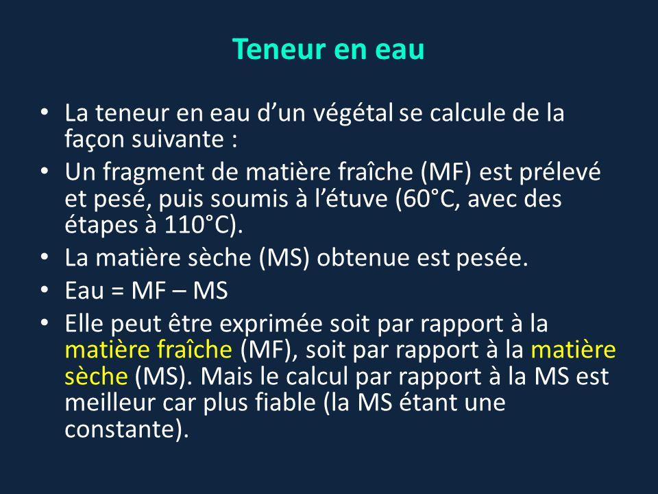 La teneur en eau d'un végétal se calcule de la façon suivante : Un fragment de matière fraîche (MF) est prélevé et pesé, puis soumis à l'étuve (60°C,