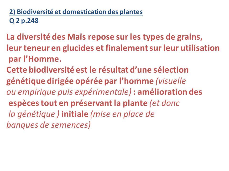 2) Biodiversité et domestication des plantes Q 2 p.248 La diversité des Maïs repose sur les types de grains, leur teneur en glucides et finalement sur