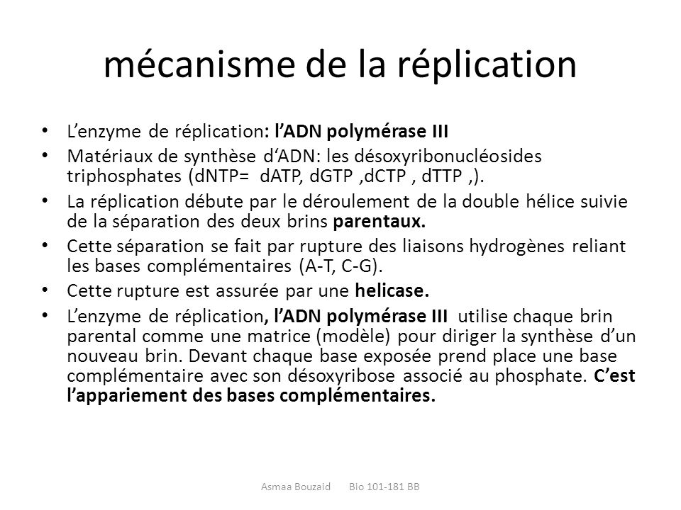 mécanisme de la réplication L'enzyme de réplication: l'ADN polymérase III Matériaux de synthèse d'ADN: les désoxyribonucléosides triphosphates (dNTP=