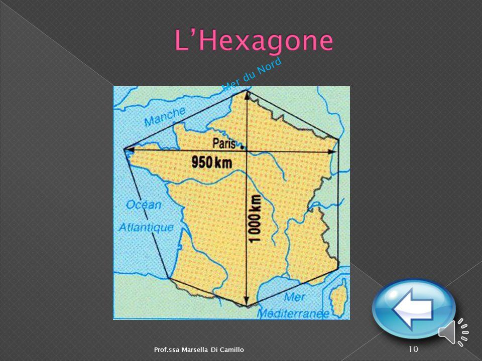La France a cinq grands fleuves:  La Seine qui traverse Paris se jette dans la Manche près du Havre. La Seine  La Loire, le plus long fleuve de Fran