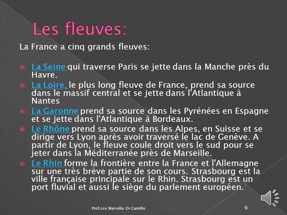  Le Bassin Parisien au centre-nord occupe presque un tiers du territoire français; Le Bassin Parisien  Le Bassin Aquitain, il occupe la partie sud-occidentale; Le Bassin Aquitain  Le sillon Rhodanien entre le Massif Central et les Alpes; Le sillon Rhodanien  La Plaine des Flandres tout au nord; La Plaine des Flandres  La Plaine d'Alsace au nord-est; La Plaine d'Alsace  La Camargue dans le Midi, au delta du Rhône.