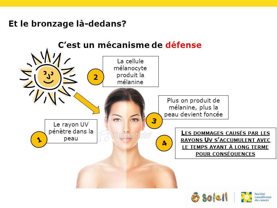 Et le bronzage là-dedans? C'est un mécanisme de défense Le rayon UV pénètre dans la peau 1 La cellule mélanocyte produit la mélanine 2 Plus on produit