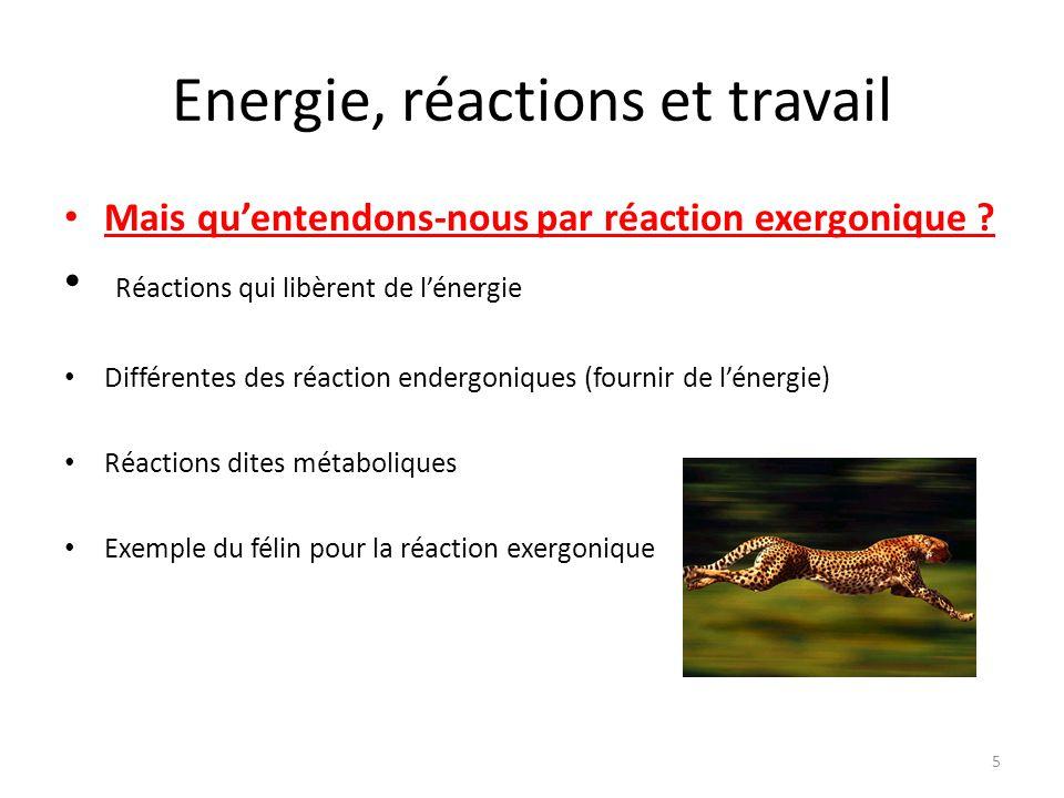 Energie, réactions et travail Mais qu'entendons-nous par réaction exergonique ? Réactions qui libèrent de l'énergie Différentes des réaction endergoni