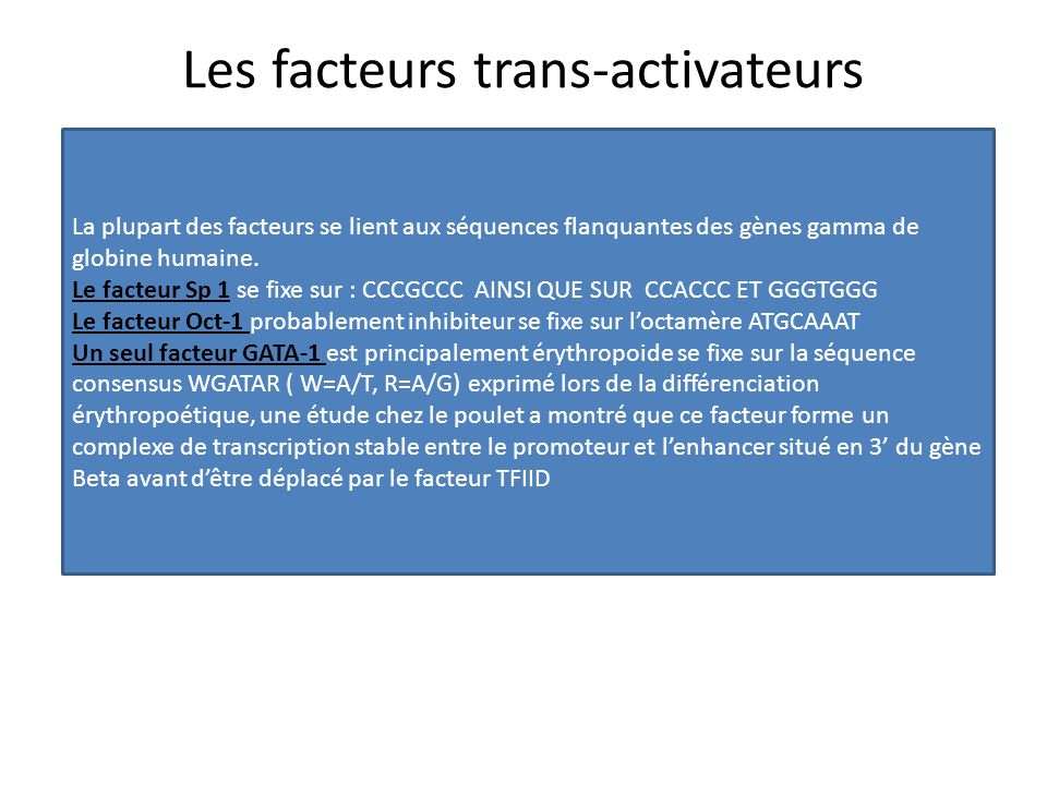 Les facteurs trans-activateurs La plupart des facteurs se lient aux séquences flanquantes des gènes gamma de globine humaine. Le facteur Sp 1 se fixe