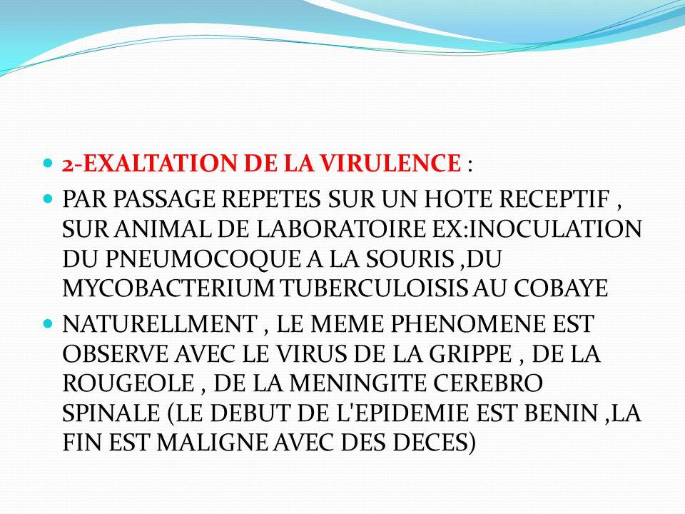 2-EXALTATION DE LA VIRULENCE : PAR PASSAGE REPETES SUR UN HOTE RECEPTIF, SUR ANIMAL DE LABORATOIRE EX:INOCULATION DU PNEUMOCOQUE A LA SOURIS,DU MYCOBA