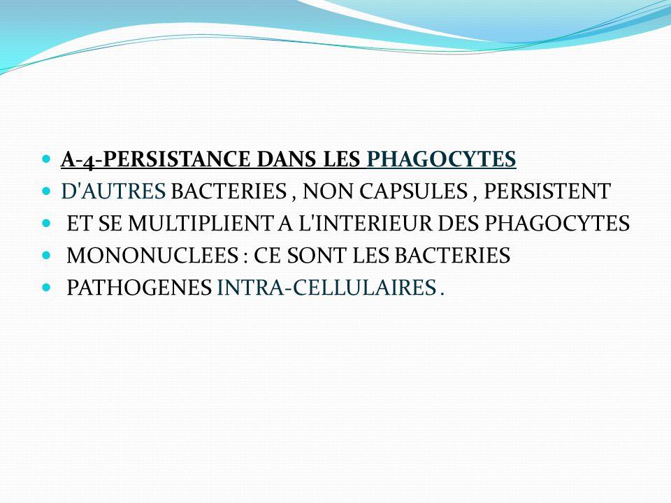 A-4-PERSISTANCE DANS LES PHAGOCYTES D'AUTRES BACTERIES, NON CAPSULES, PERSISTENT ET SE MULTIPLIENT A L'INTERIEUR DES PHAGOCYTES MONONUCLEES : CE SONT