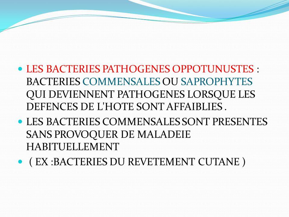 LES BACTERIES PATHOGENES OPPOTUNUSTES : BACTERIES COMMENSALES OU SAPROPHYTES QUI DEVIENNENT PATHOGENES LORSQUE LES DEFENCES DE L'HOTE SONT AFFAIBLIES.