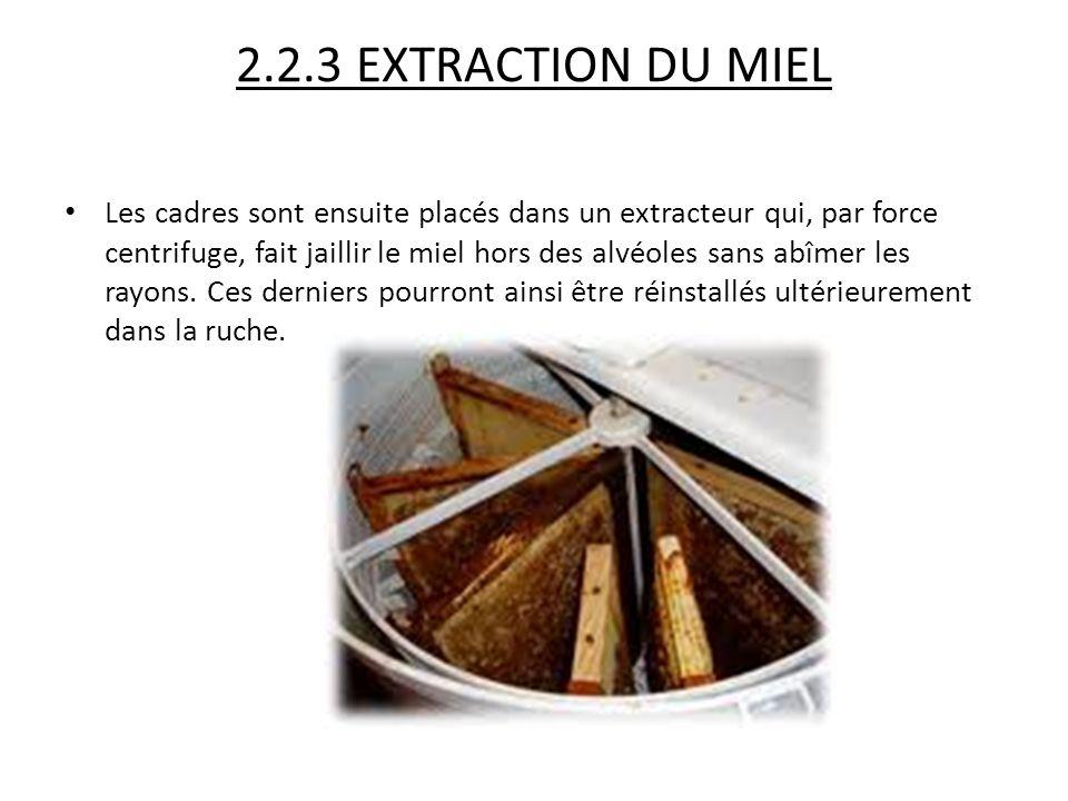 2.2.3 EXTRACTION DU MIEL Les cadres sont ensuite placés dans un extracteur qui, par force centrifuge, fait jaillir le miel hors des alvéoles sans abîm