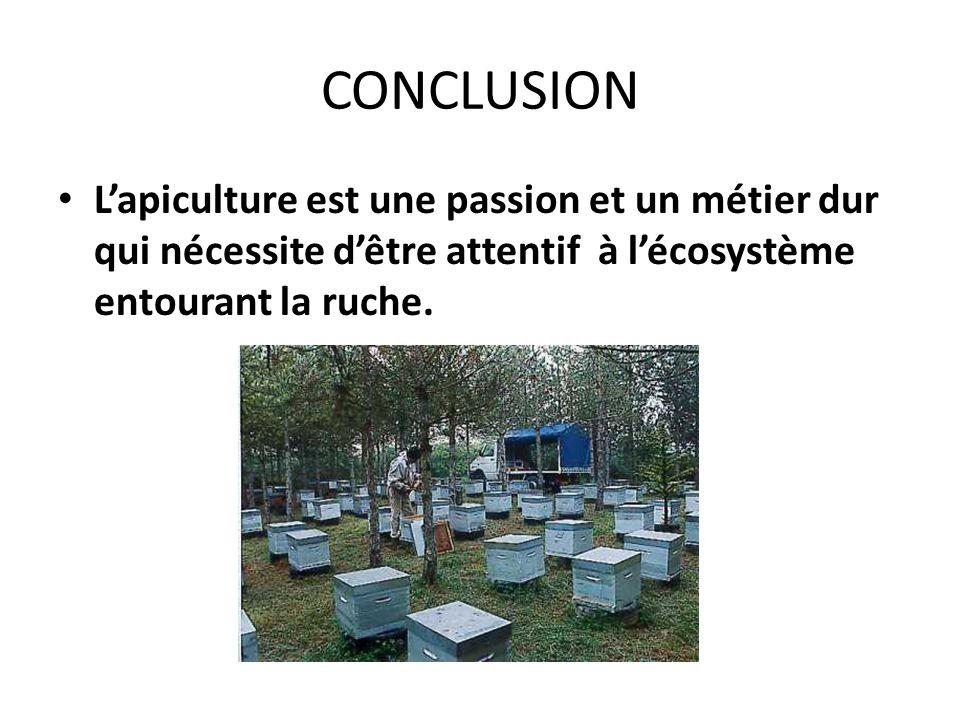 CONCLUSION L'apiculture est une passion et un métier dur qui nécessite d'être attentif à l'écosystème entourant la ruche.