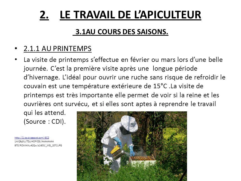 2.1.2 EN ETE En juin juillet, les colonies deviennent très importantes, les risques d'essaimages diminuent, les abeilles constituent leur réserve de miel.