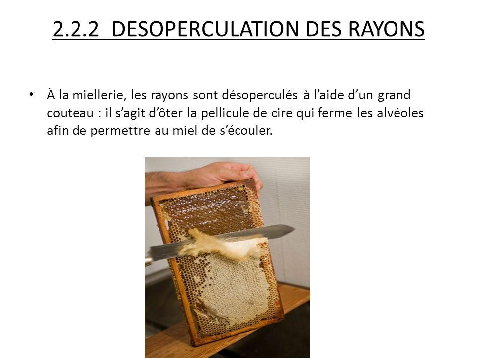 2.2.2 DESOPERCULATION DES RAYONS À la miellerie, les rayons sont désoperculés à l'aide d'un grand couteau : il s'agit d'ôter la pellicule de cire qui