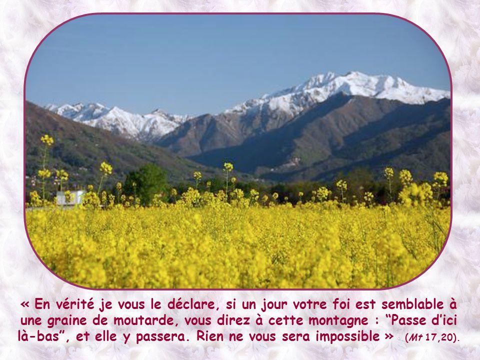 Et cette foi, capable de déplacer les montagnes, n'est nullement réservée à quelques personnes en dehors du commun.