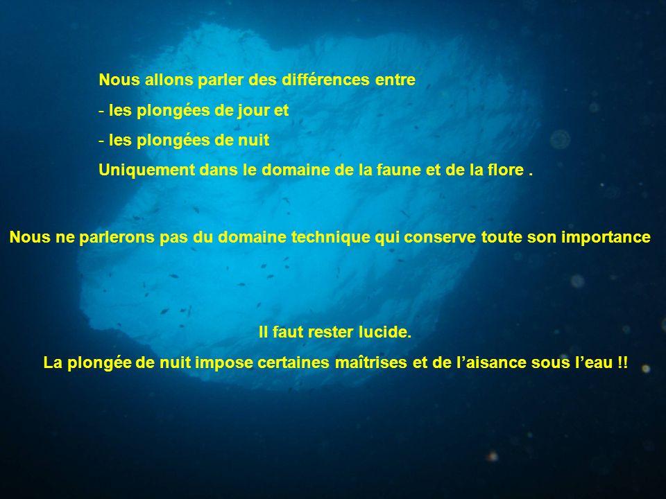 une lampe peut être utile pour nous plongeurs Même avec la perte de couleurs, la perception des animaux marins reste plus sensible que la notre Même avec la perte de couleurs, la perception des animaux marins reste plus sensible que la notre.