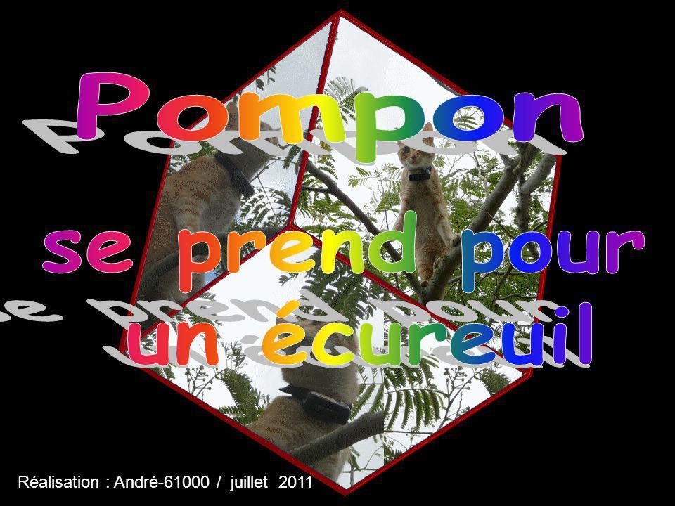 Réalisation : André-61000 / juillet 2011