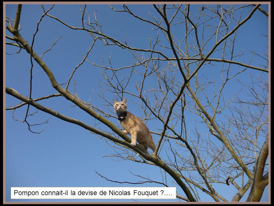 Pompon connait-il la devise de Nicolas Fouquet ?….