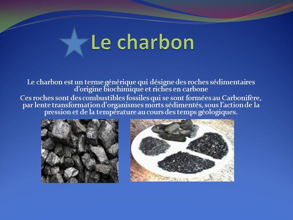 Le charbon est un terme générique qui désigne des roches sédimentaires d'origine biochimique et riches en carbone Ces roches sont des combustibles fos