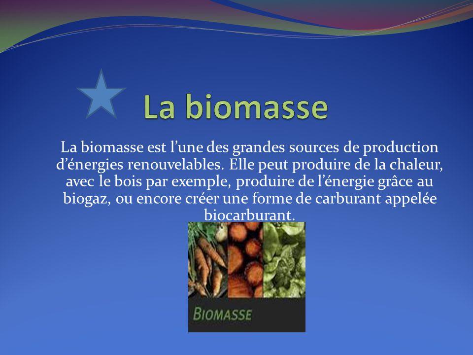 La biomasse est l'une des grandes sources de production d'énergies renouvelables. Elle peut produire de la chaleur, avec le bois par exemple, produire
