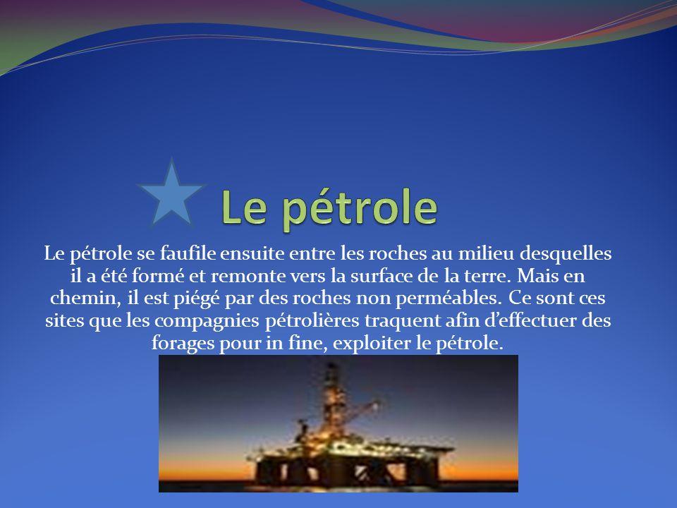 Le pétrole se faufile ensuite entre les roches au milieu desquelles il a été formé et remonte vers la surface de la terre. Mais en chemin, il est piég
