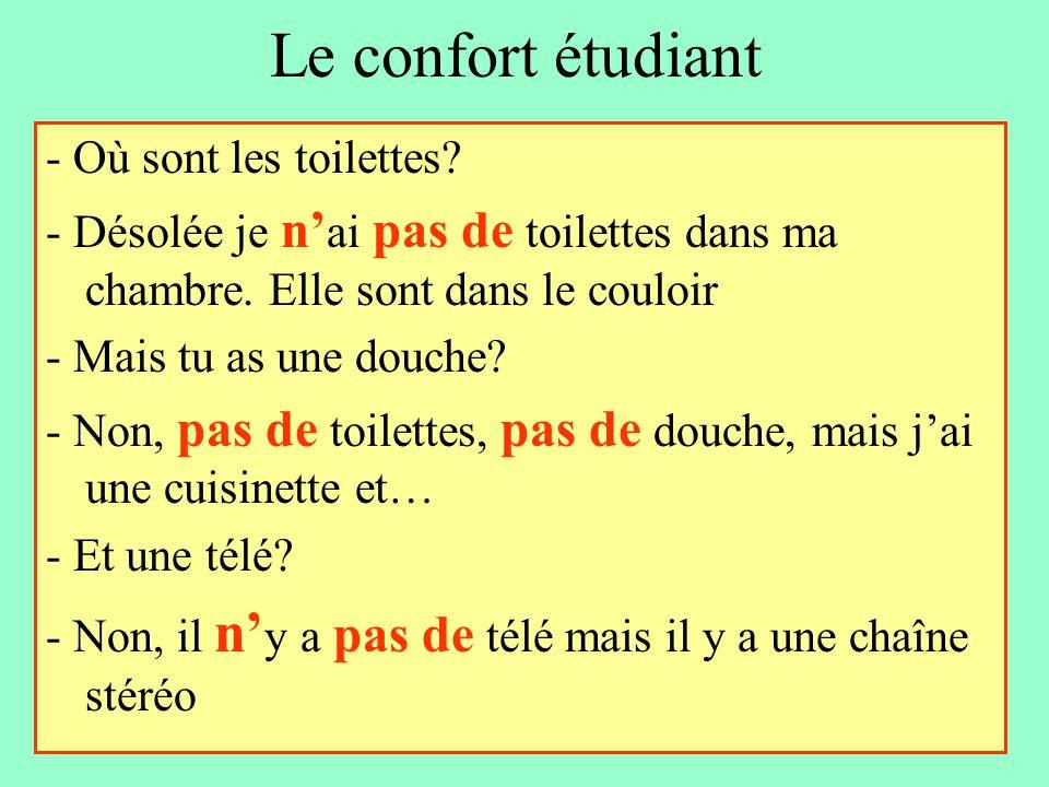 Le confort étudiant - Où sont les toilettes? - Désolée je n' ai pas de toilettes dans ma chambre. Elle sont dans le couloir - Mais tu as une douche? -