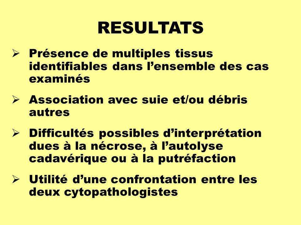 RESULTATS  Présence de multiples tissus identifiables dans l'ensemble des cas examinés  Association avec suie et/ou débris autres  Difficultés poss