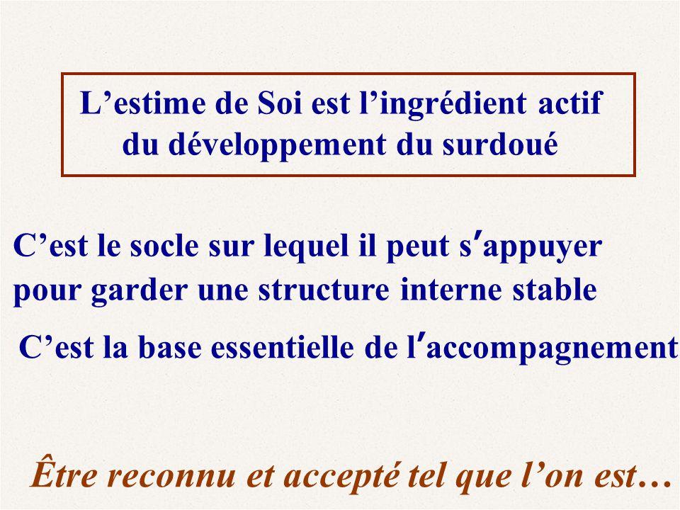 L'estime de Soi est l'ingrédient actif du développement du surdoué C'est le socle sur lequel il peut s'appuyer pour garder une structure interne stabl